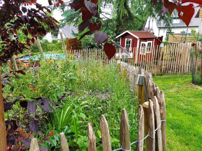 Lagenser Gärten - BUND und schön - am 14. Juni 2020